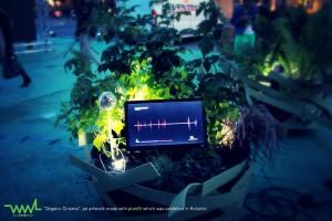 """Nice Award_winner_02 Platz 2: """"PanEt"""" - ein Open-Source-Gerät zur Erfassung und Visualisierung biologischer Daten von Pflanzen. Die Daten von Pflanzen in Städten werden auswertet und sollen so Bausteine zukünftiger """"Smart Cities"""" sein. (c) Vladimir Wegener"""